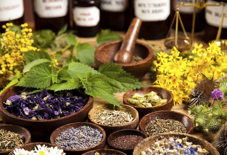 The Etheric Body and the Subtle      Science of Homeopathy